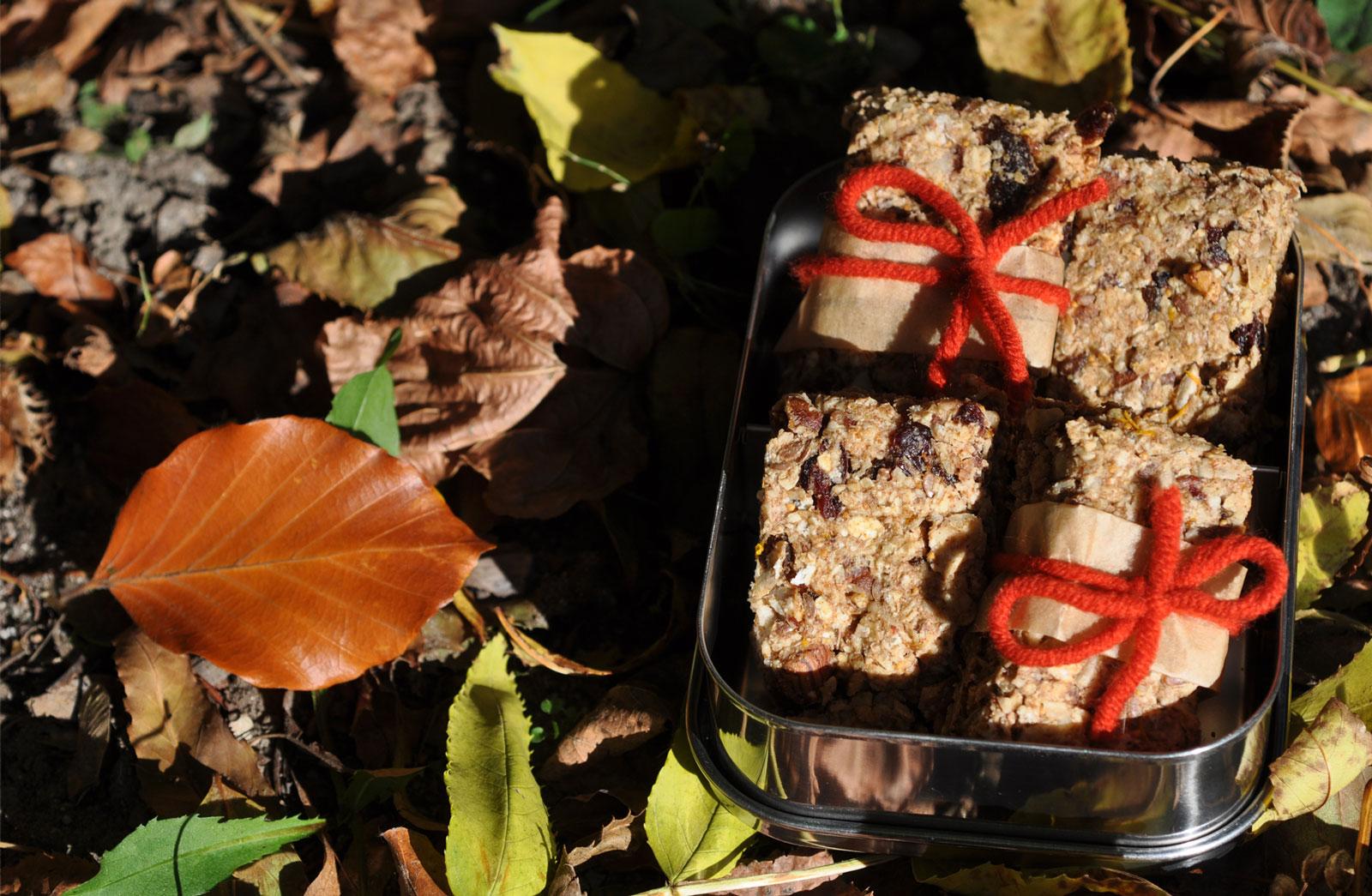 50 G Getrocknete Cranberries 60 G Getrocknete Soft Feigen 1 TL Zimt 1 Reife  Banane 100 G Mandelmus 35 G Ahornsirup Schalenabrieb Von 1/2   1 Orange